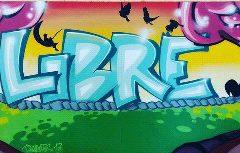 Le street Art matérialisé par les Tsapat d'Ernée